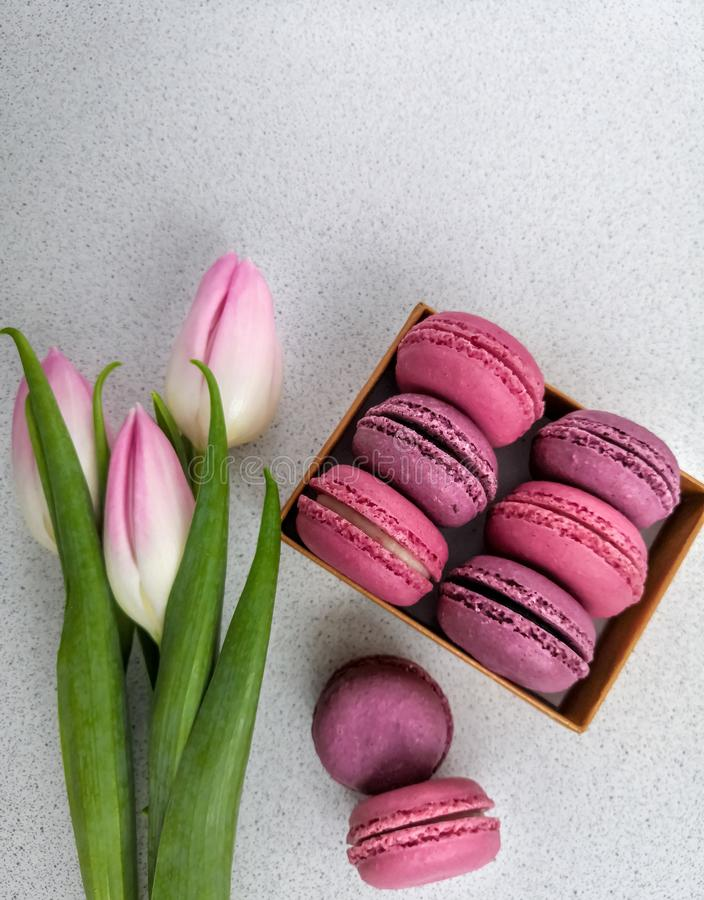 Tulips and a box of macarons on a white background.  stock image