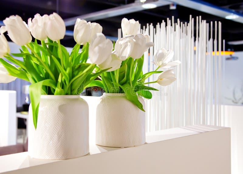 Tulips brancos no interior imagens de stock royalty free
