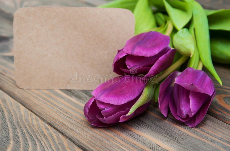 Tulips with a card royalty free stock images