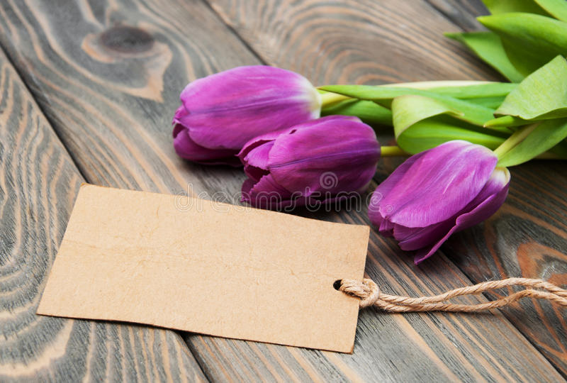 Tulips with a card stock photos