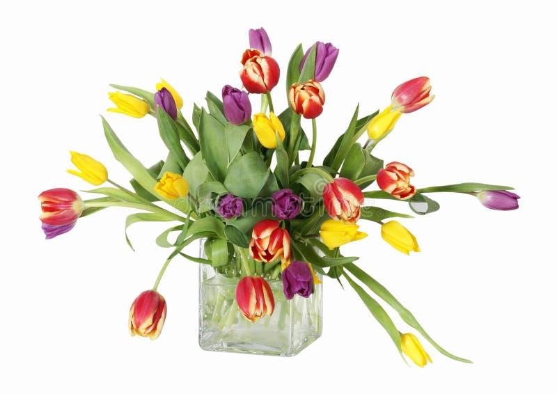 Tulips coloridos no vaso fotografia de stock royalty free