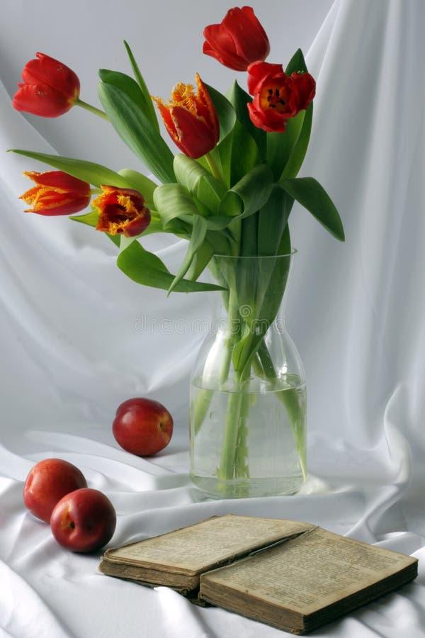Tulips com livro imagens de stock