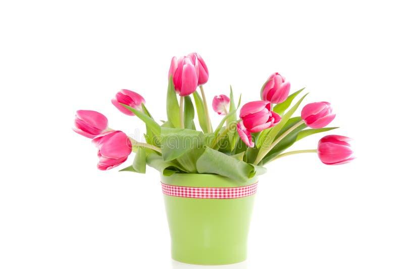 Tulips cor-de-rosa em um vaso verde imagem de stock