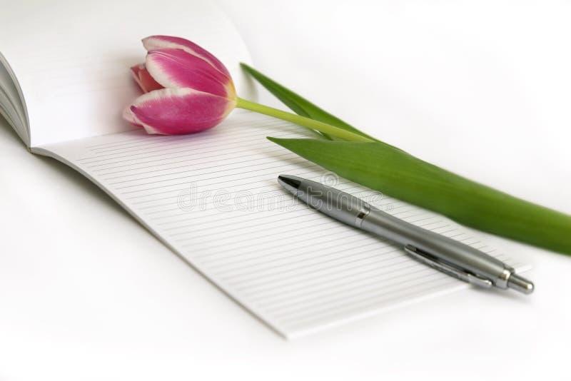 Tulips cor-de-rosa, pena, nota foto de stock royalty free