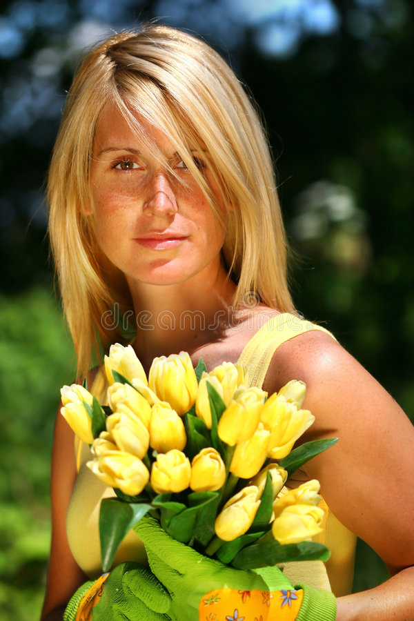 Tulips da terra arrendada da mulher fotografia de stock royalty free