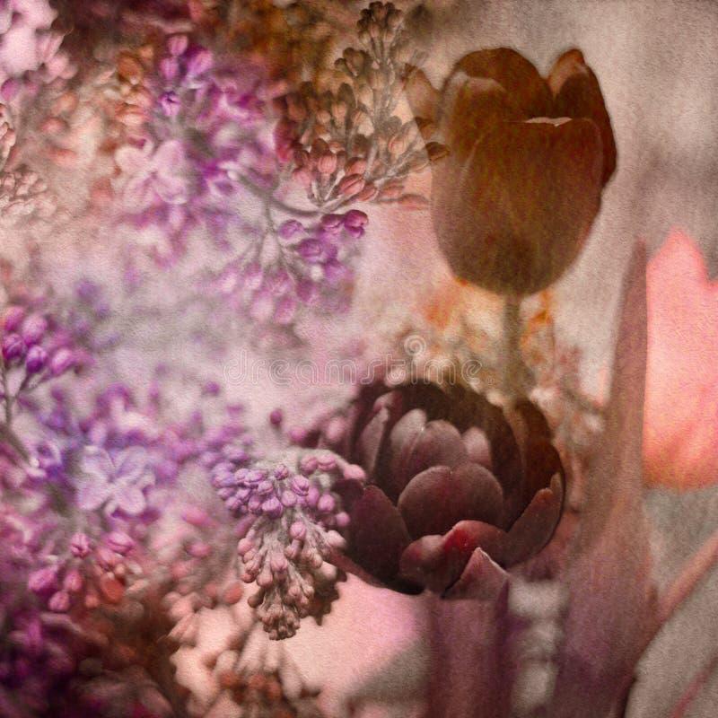 Tulips e Lilac ilustração royalty free