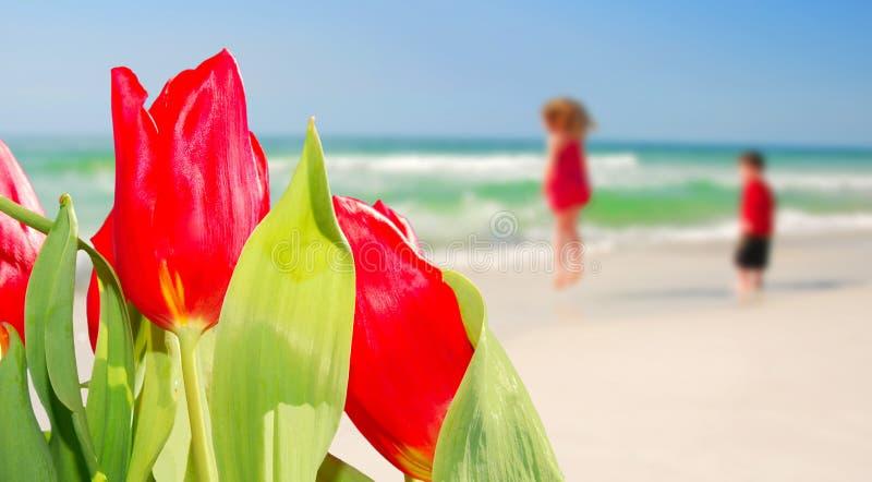 Tulips e miúdos na praia fotografia de stock
