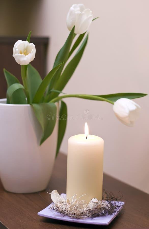 Tulips e vela fotos de stock royalty free