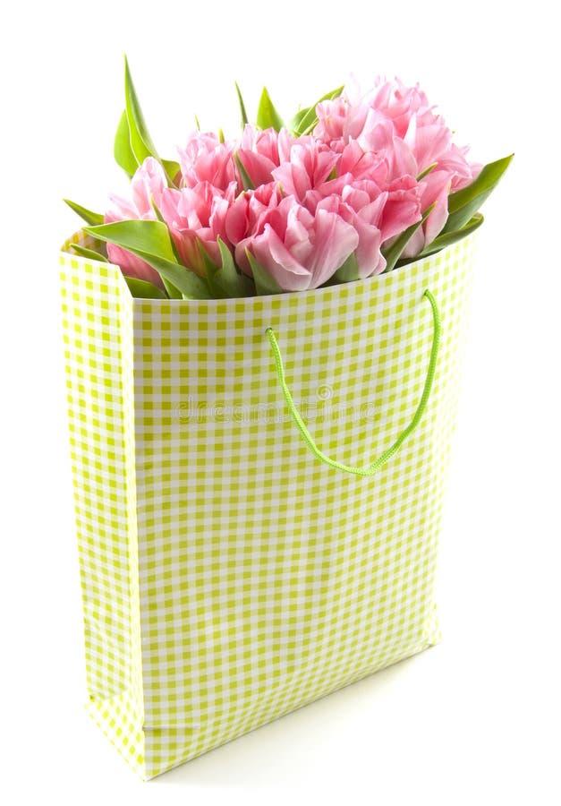 Tulips encantadores fotografia de stock royalty free
