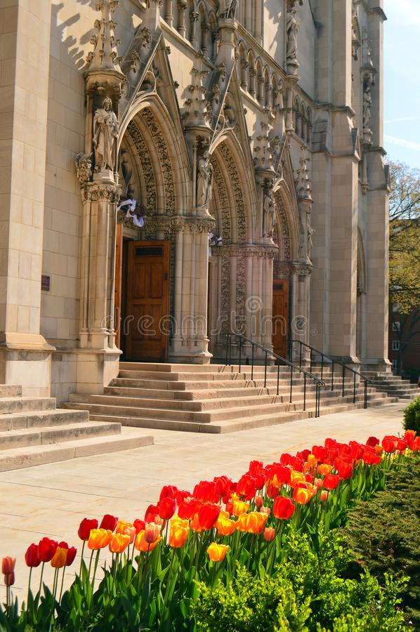 Tulips in front of the Heinz Chapel royalty free stock photo