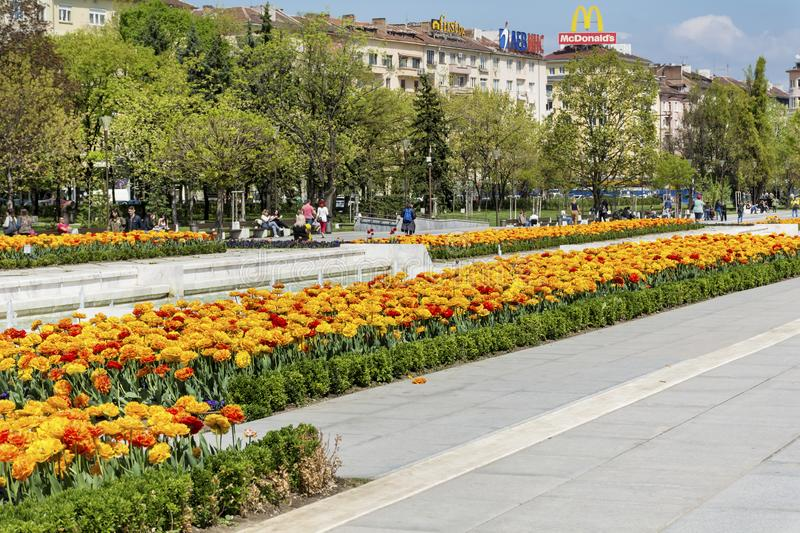 Tulips in front of the National Palace of Culture, Sofia, Bulgaria stock photos