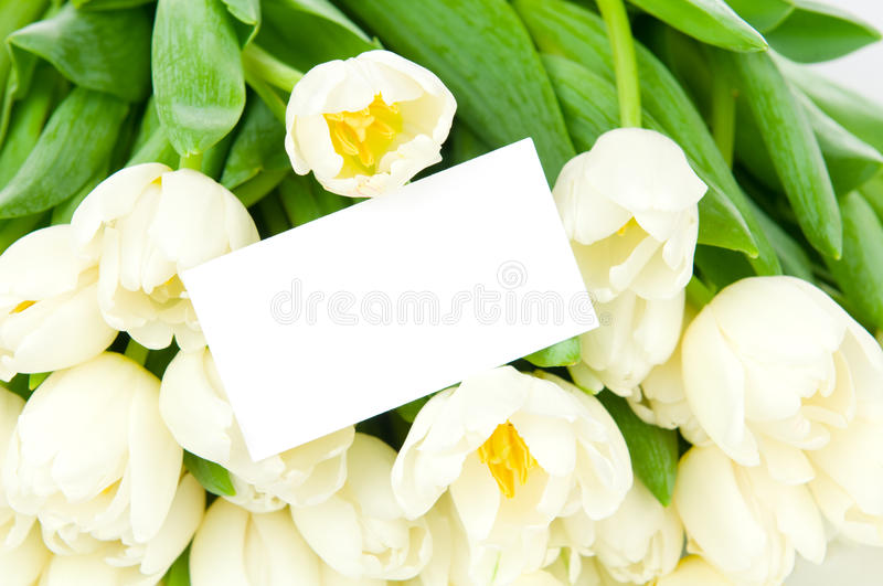 Download Tulips with greeting card stock image. Image of bouquet - 27615465