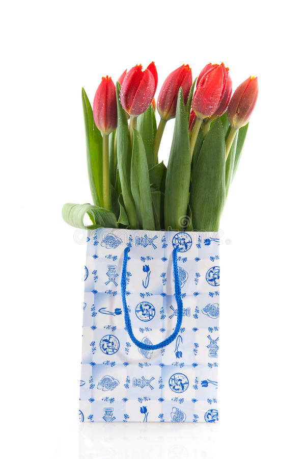 Tulips holandeses imagens de stock royalty free