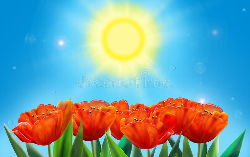 Tulips. Holiday background. Sun day with red tulip on blue sky background, wallpaper digital illustration. For creation greeting card, Celebrate card royalty free illustration