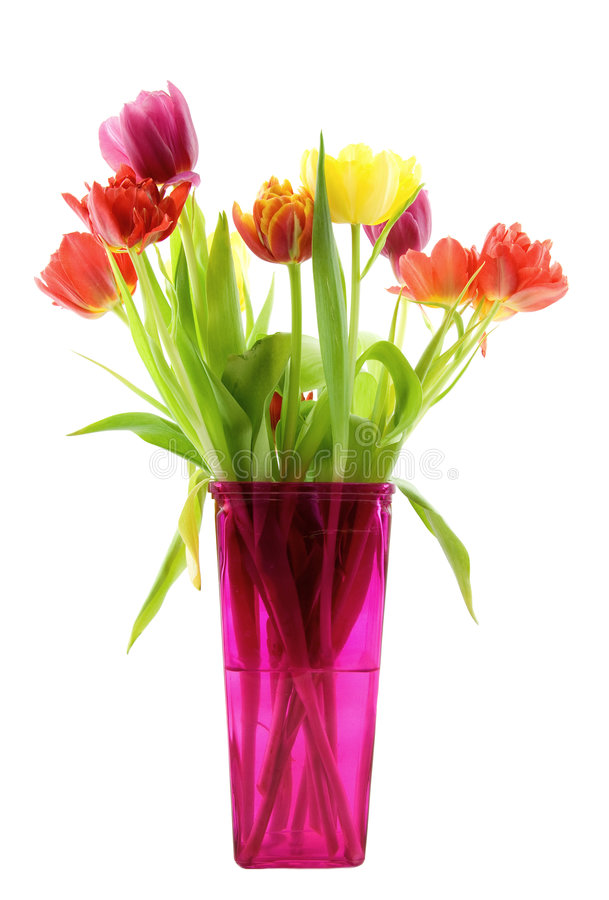 Free Tulips In A Pink Vase Royalty Free Stock Images - 8409779