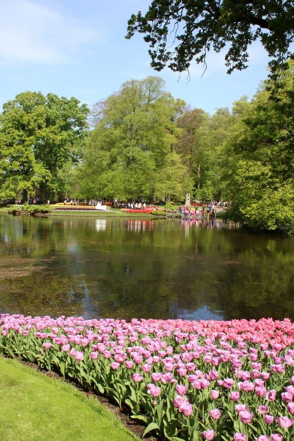 Tulips and lake view, Keukenhof Gardens, Holland stock image