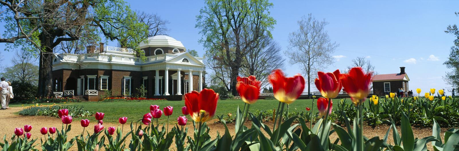 Tulips and Monticello in spring royalty free stock images