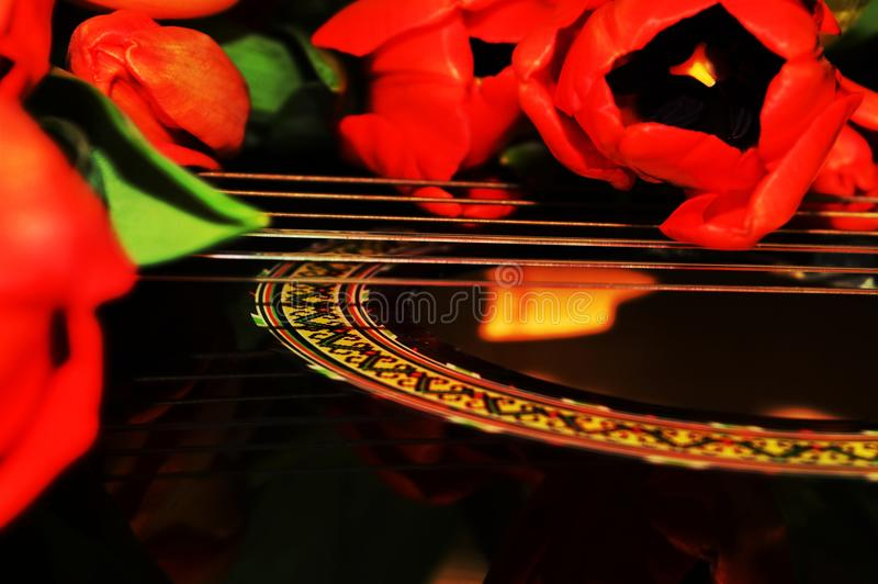 Tulips and music royalty free stock photo