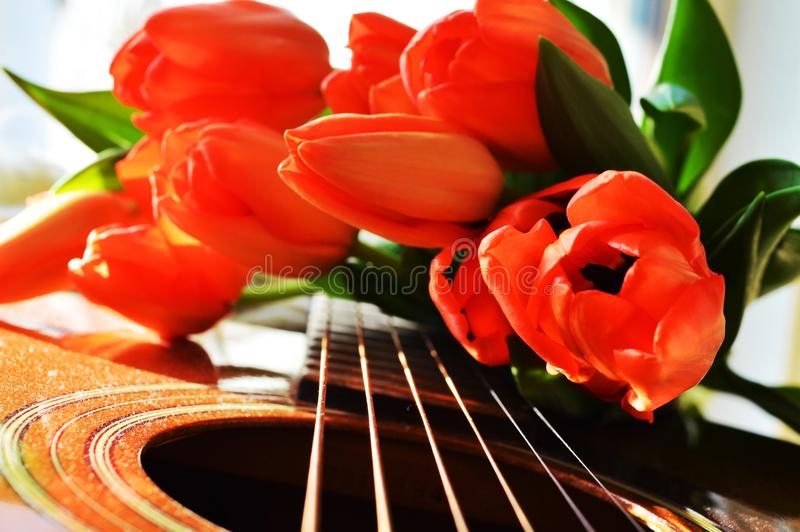 Tulips offered with the music royalty free stock photo