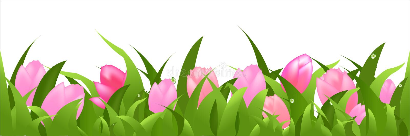 Tulips Panorama vector illustration