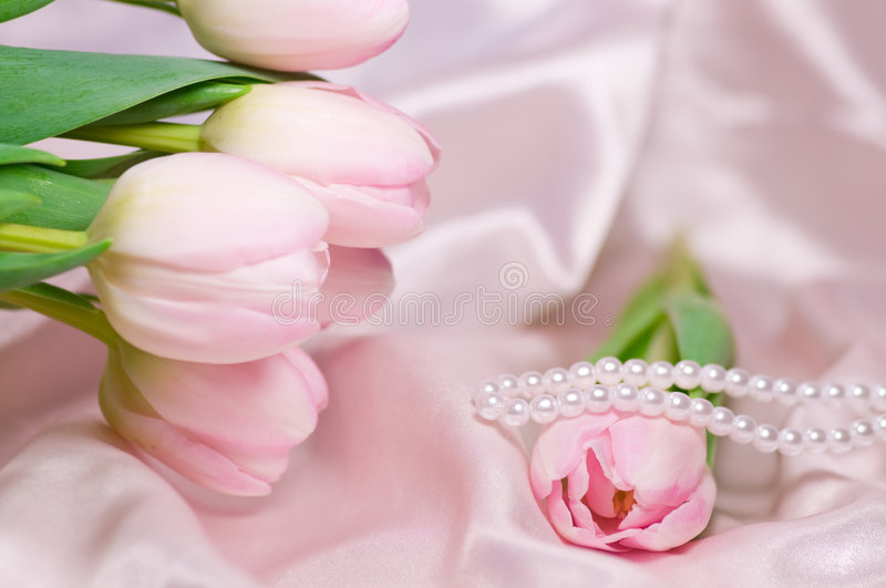 Tulips and pearls stock photography