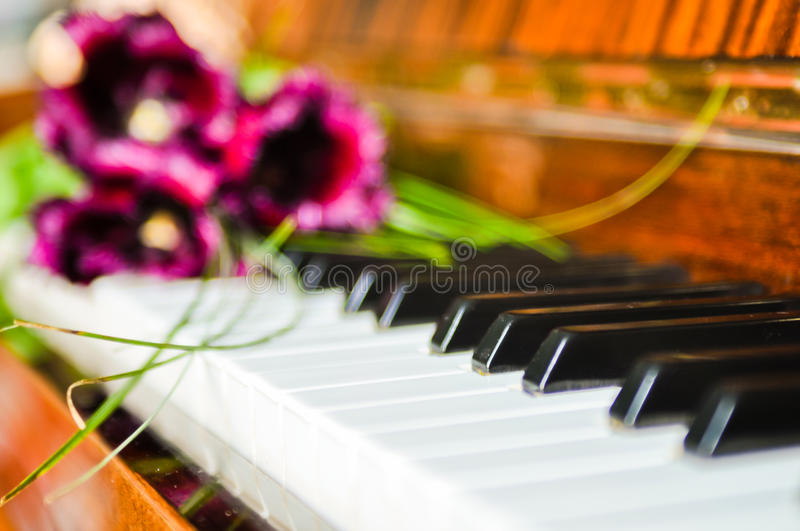 Tulips On The Piano Stock Images