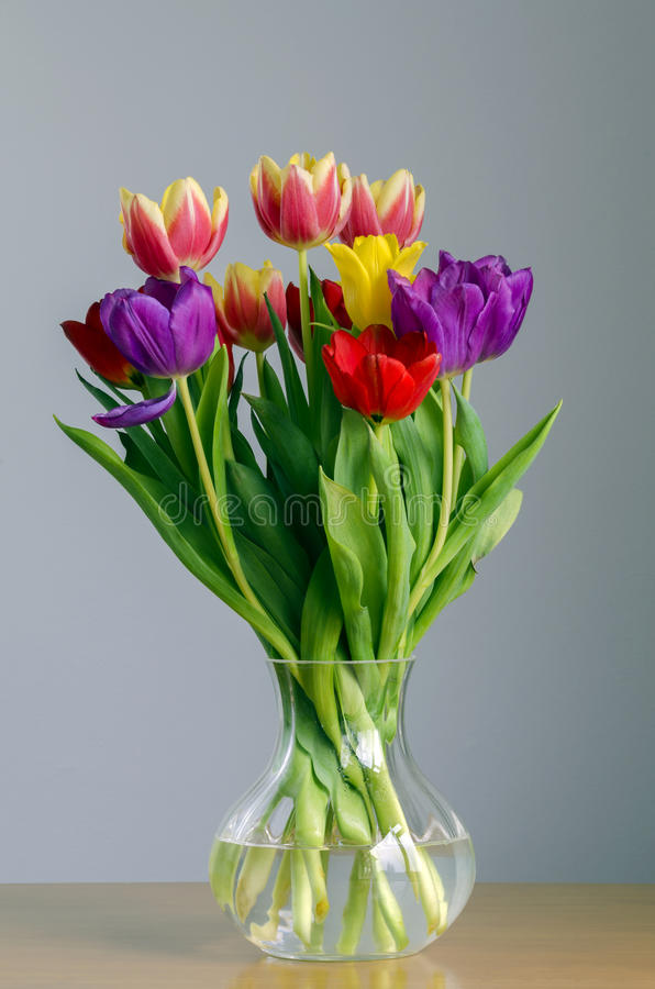 Download Tulips stock image. Image of pink, tulips, green, life - 37180773