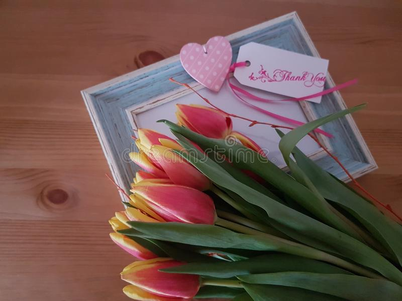 Tulips with Thank You Note stock image