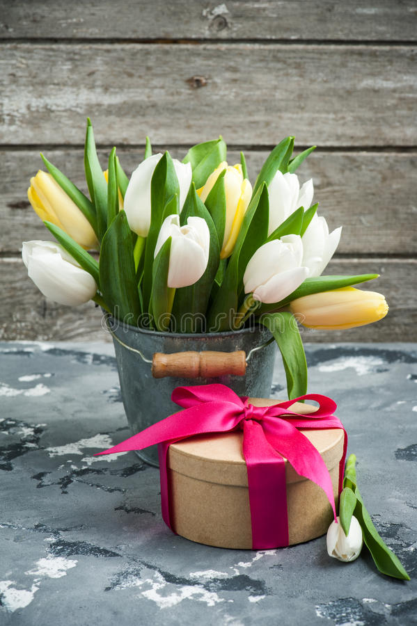 Tulips in tin bucket and a gift package. White and yellow tulips in tin bucket and a gift package on concrete background. Spring in the garden background stock image
