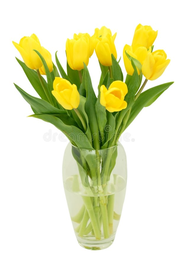 Download Tulips in a vase stock image. Image of crystal, yellow - 2306621
