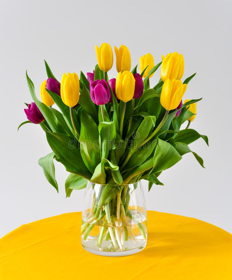 Tulips in vase Valentine day stock images