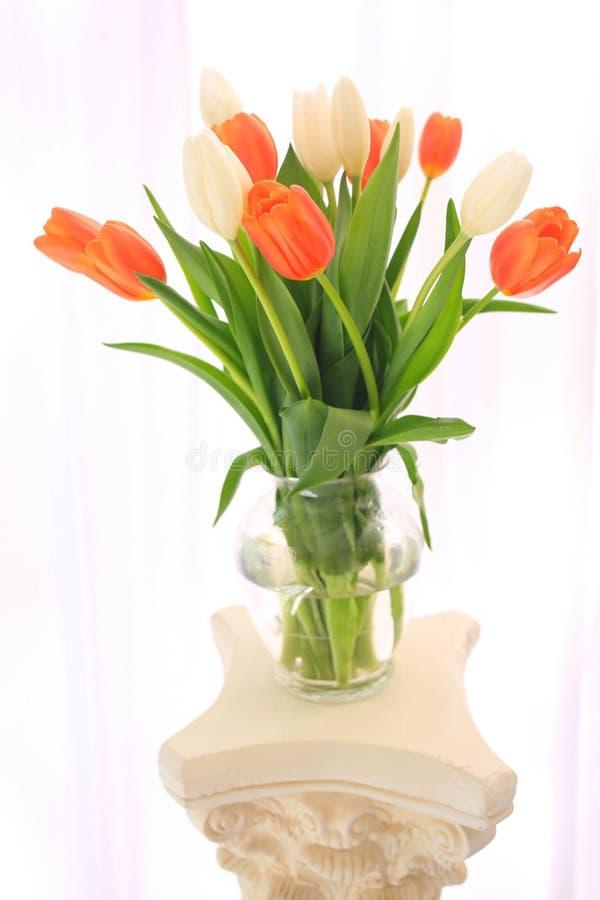 Tulips vase royalty free stock photos