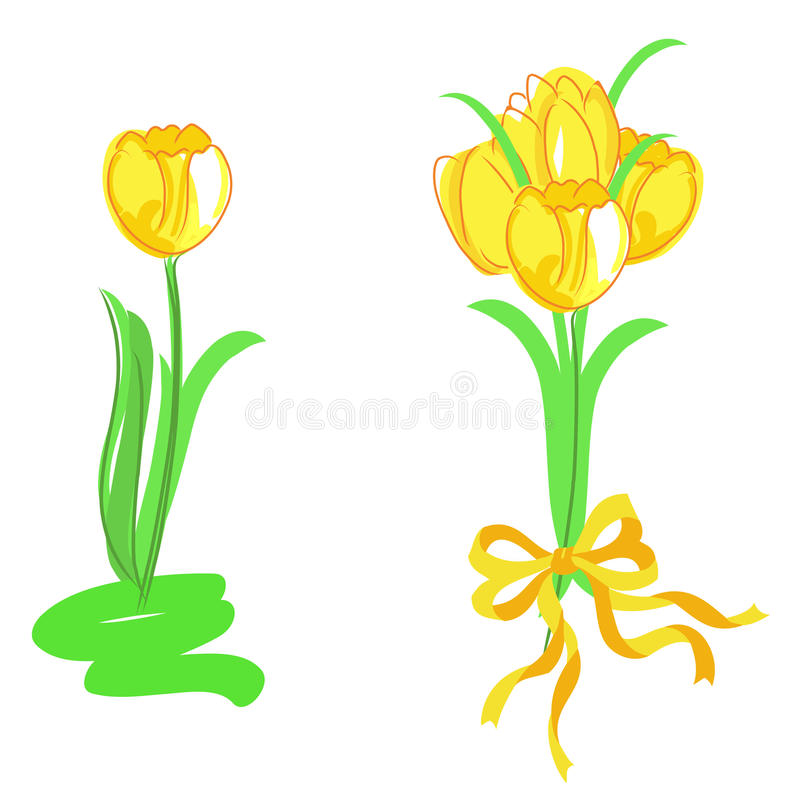 Tulips vector royalty free stock image