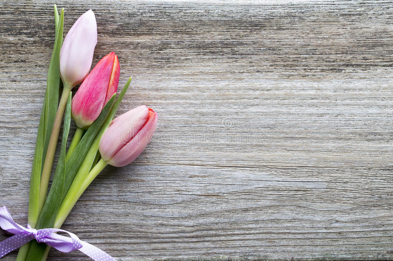 Tulips on the wooden background. royalty free stock images