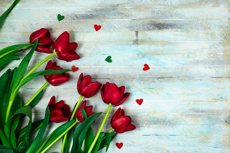 Tulips on a wooden patern background. Red tulips on blue background with copy space , flat lay , top view , international women day concept stock photo