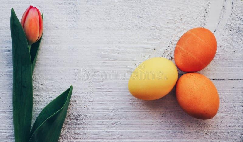 Tulp en van eierenpasen achtergrondwijnoogst vector illustratie