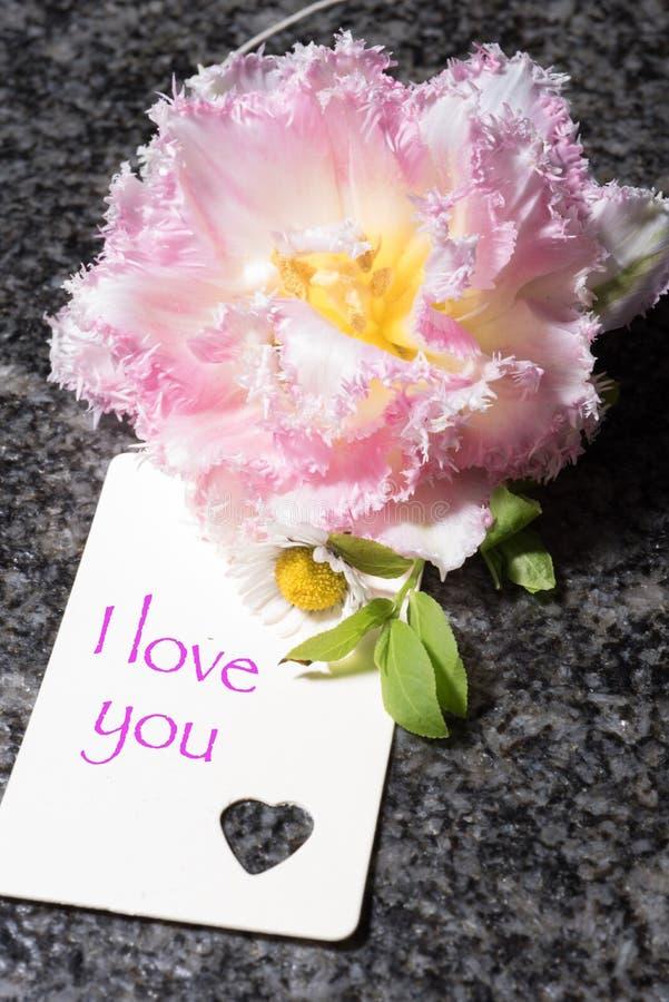 Tulp met kenteken geschreven I-liefde u stock afbeeldingen