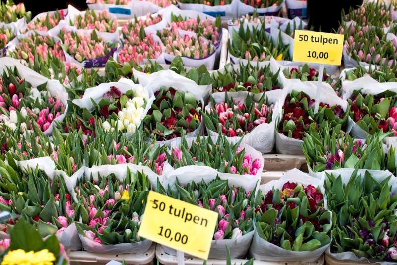 Tulpan i en holländsk marknad med utsatta priser och med olikt royaltyfria foton