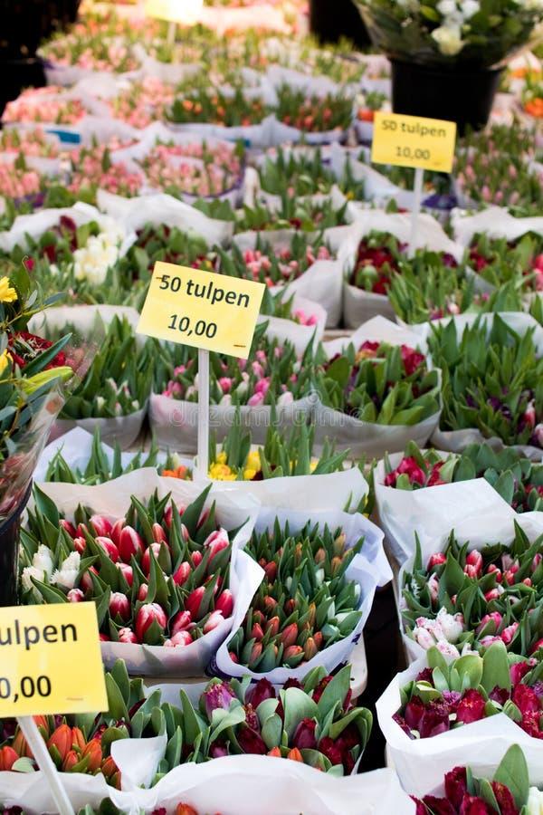 Tulpan i en holländsk marknad med utsatta priser och med olikt arkivbilder