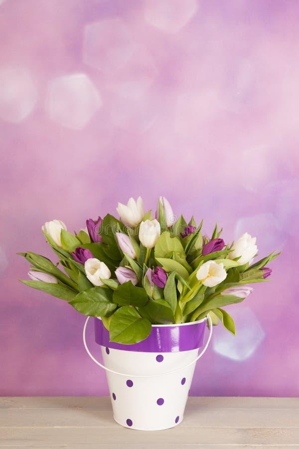 Tulpan i vase fotografering för bildbyråer