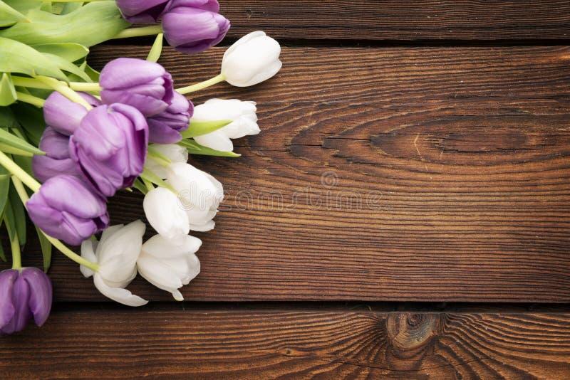 Tulpan på mörk lantlig träbakgrund arkivfoto