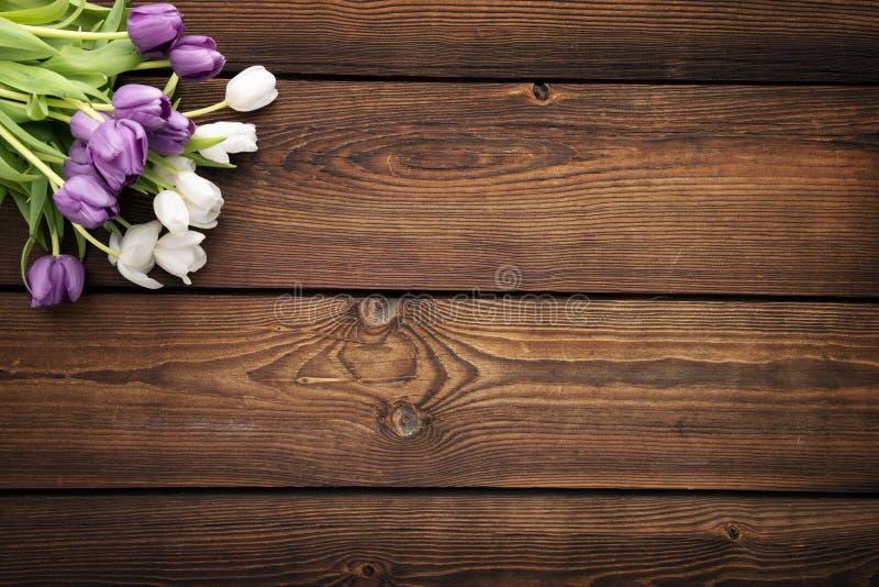 Tulpan på mörk lantlig träbakgrund royaltyfria bilder