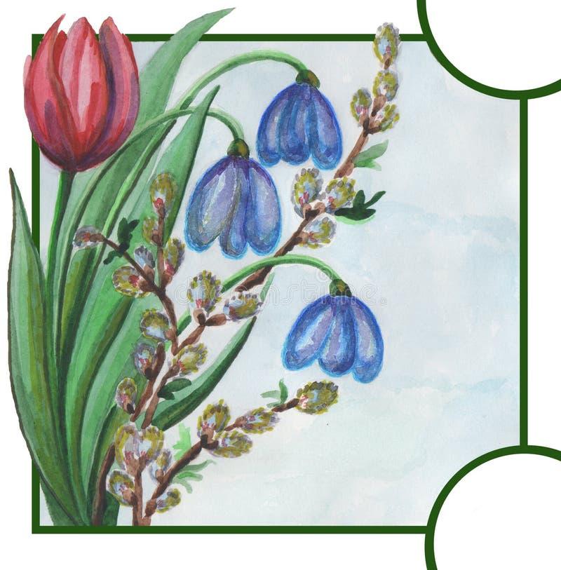 Tulpan pil, snödroppe, klocka, sidor, vykort, vår, målning, vattenfärg, blommor vektor illustrationer