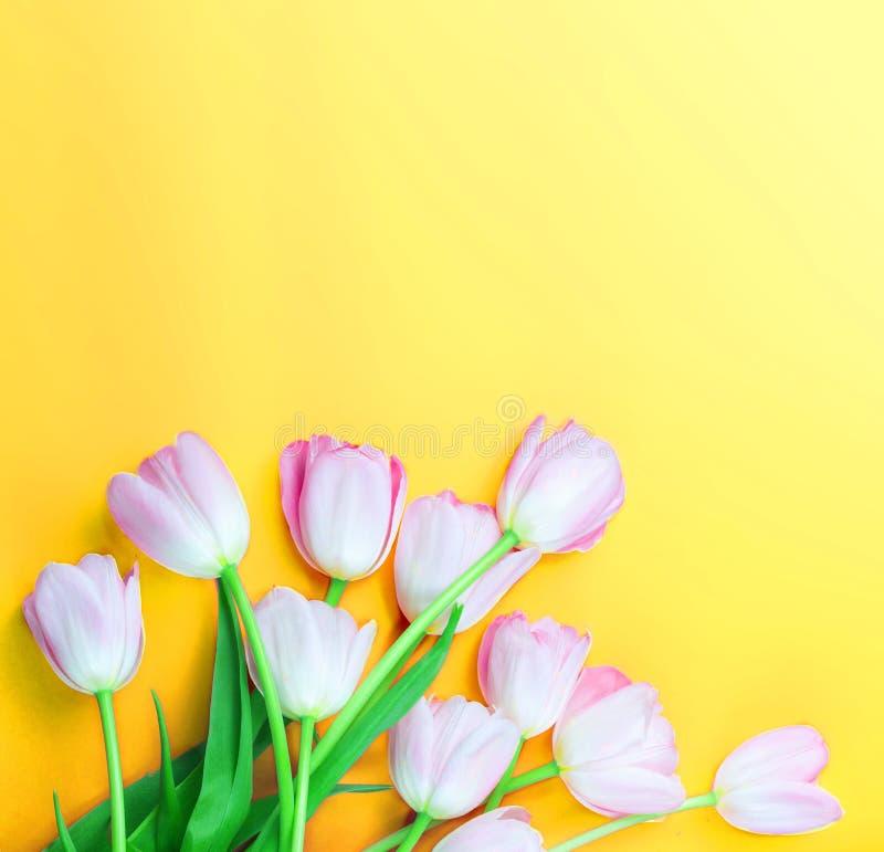 Tulpanblommor på färgrik bakgrund med kopieringsutrymme Härliga vårblommor på den gula tabellen, bästa sikt arkivfoto