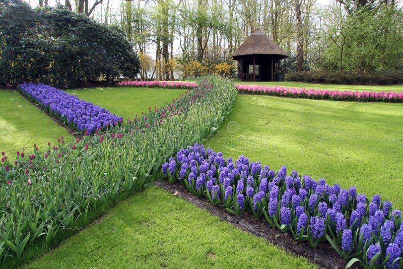 Tulpanträdgård med gazeboen arkivfoton