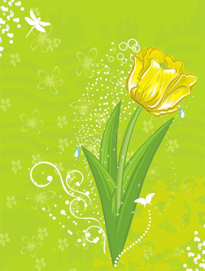 Tulpe lizenzfreie abbildung