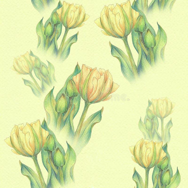 Tulpe - eine Zusammensetzung von Blumen Gerade ein geregnet Nahtloses Muster vektor abbildung