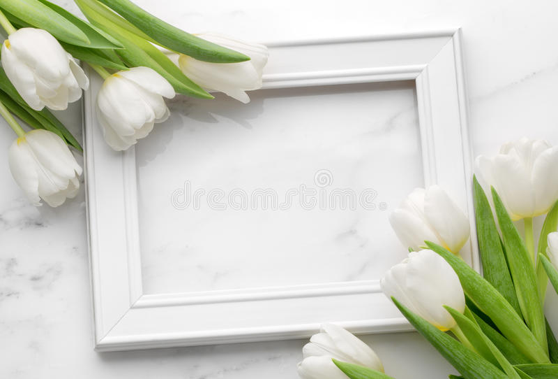 Tulpe mit leerem bilderrahmen stockbild bild von - Anordnung bilderrahmen ...
