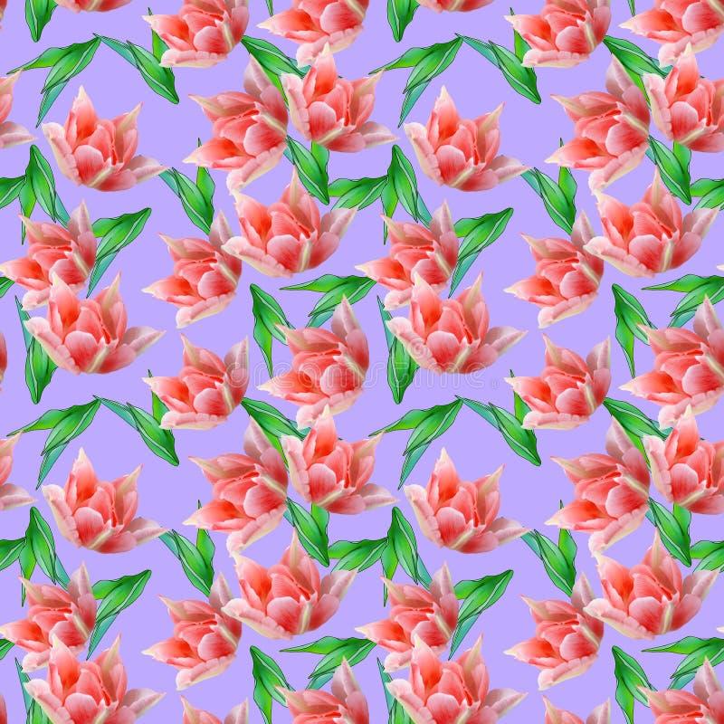 Tulpe Nahtlose Musterbeschaffenheit von Blumen Blumenhintergrund, p lizenzfreie abbildung