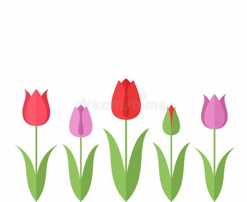 Tulpe set stock abbildung